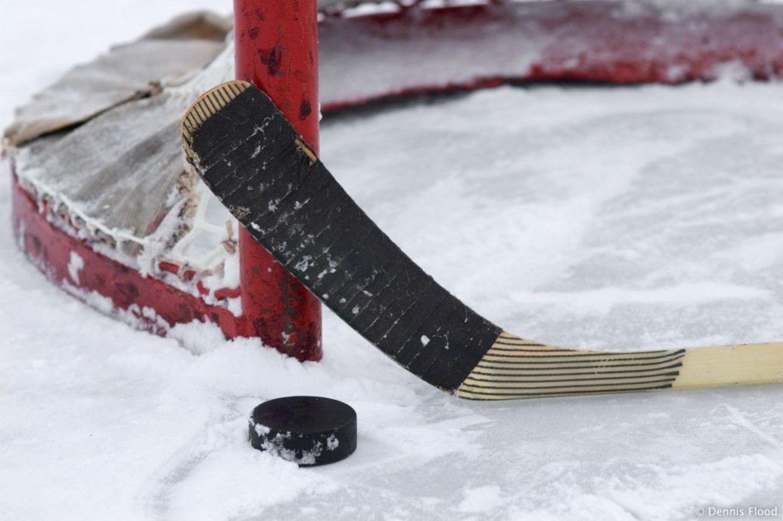 Eishockey Vorhersagen